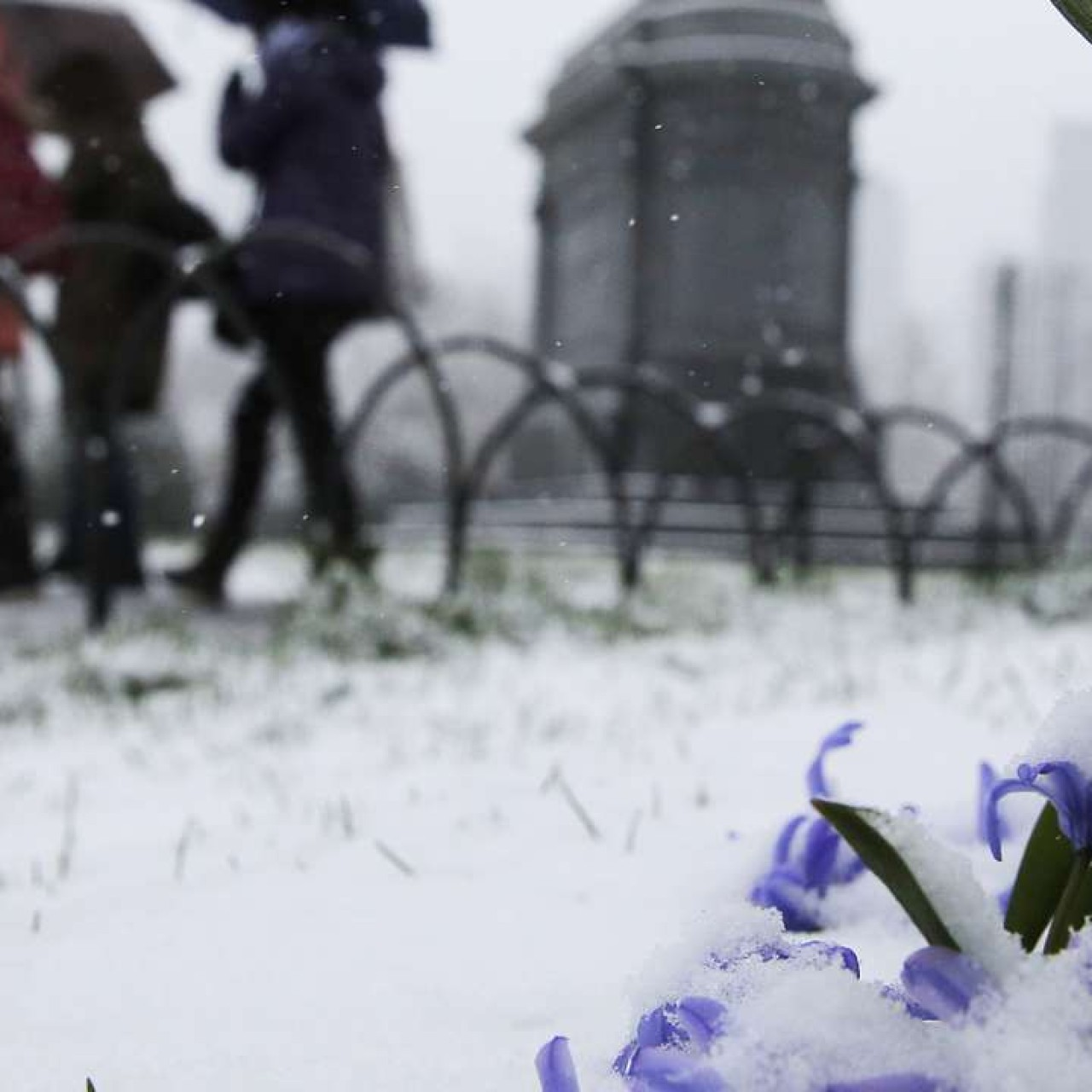 Political Portent Written In Slush At >> Us Belted By Spring Snow Storm South China Morning Post